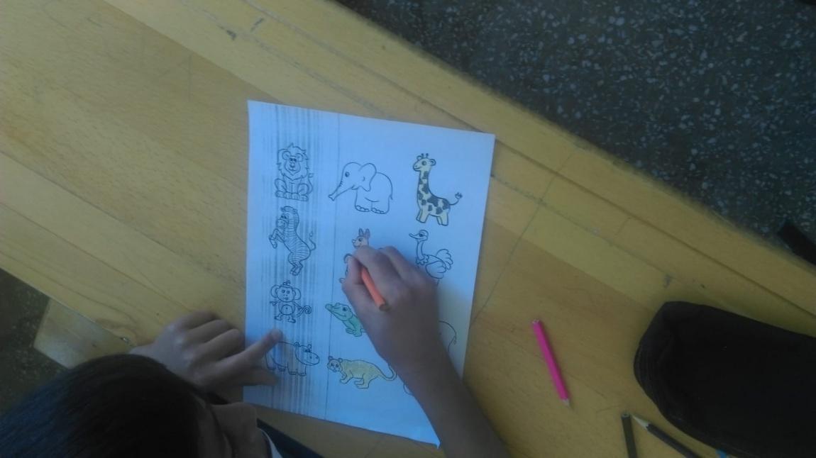 3-A Sınıfı Öğrencileri Hayvanlar Boyama Çalışması Yaptılar